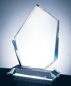 Modern Shape Glass Award