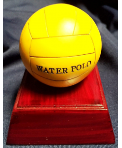 Water Polo Resin Award