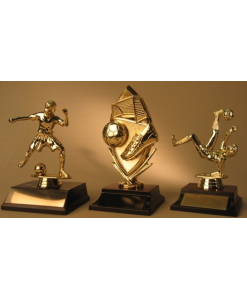 Miscellaneous Sports Trophies